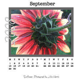 mini desk calendars artwork